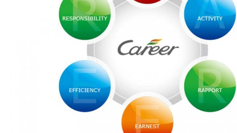 17-18 Career Guidance Team Year Plan-1